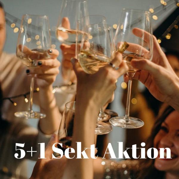 5+1 Sekt Aktion! Unser Bester: 2014 Insel Mariannenaue Chardonnay Sekt extra Brut